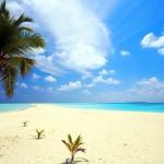 Save Money on Your Grand Cayman Wedding